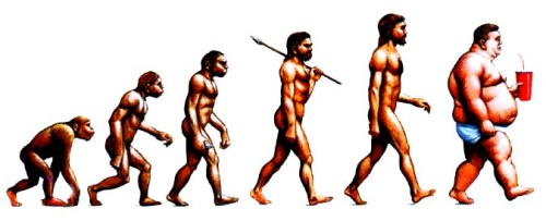 evolution-of-man-apes-to-fat-slops